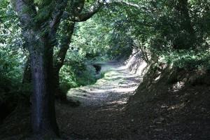 Rustic Walks Guernsey