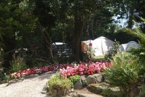 Top Field Vaugrat Campsite Guernsey